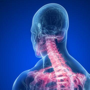 Risques de déminéralisation osseuse et donc d'ostéoporose - Osteo Easy Complex - Easynutrition.eu