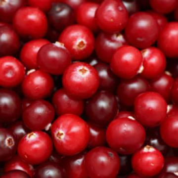 Complément alimentaire prévention des infections urinaires - Cranberry - Easynutrition.eu
