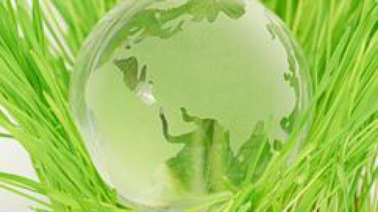 Compléments alimentaires visent à l'élimination métaux lourds, concernent les pathologies liées aux métaux toxiques - Environnement - Easynutrition.eu