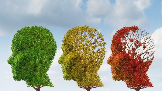 Produits naturels pour la maladie d'alzheimer, l'autisme, l'hyperactivité ou le Brun out - Comportement - Easynutrition.eu