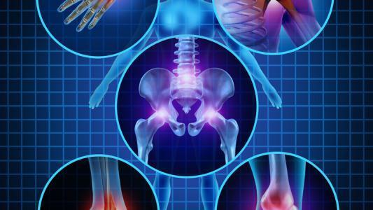 Compléments alimentaires pour combattre le vieillissement osseux, les affections articulaires ou de l'ossature - Ossature - Easynutrition.eu